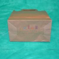 Крафт пакет 33х22х9 с плоскими ручками