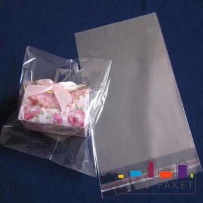 Пакет ПП 20х25+5л.кл. с клеевым клапаном